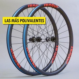 "29"" Carbono PREMIUM 33mm, DT Swiss y CX-Ray. Ruedas muy ligeras"